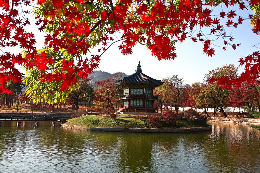 Park Da Coreia Do Sul